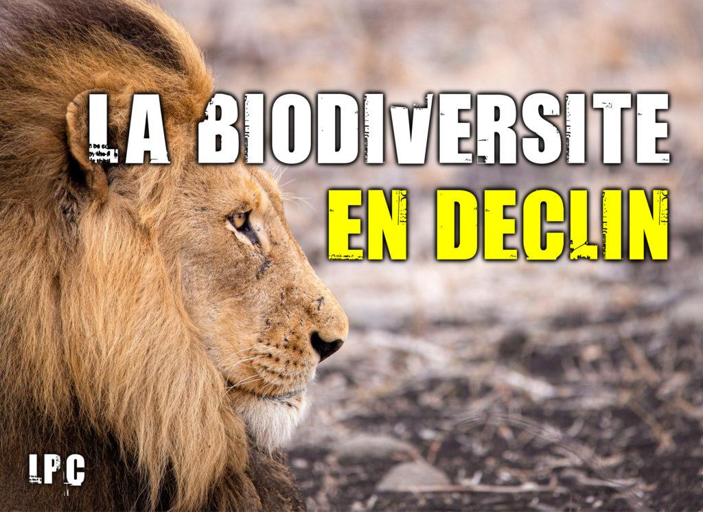 La biodiversité en déclin