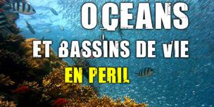 Océans, barrière de corail, mangroves, herbiers... les bassins de vie marins en péril