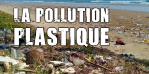 Le plastique : une pollution qui s'aggrave